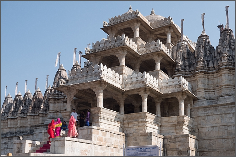 P1030608_Jodhpur Dec 2017