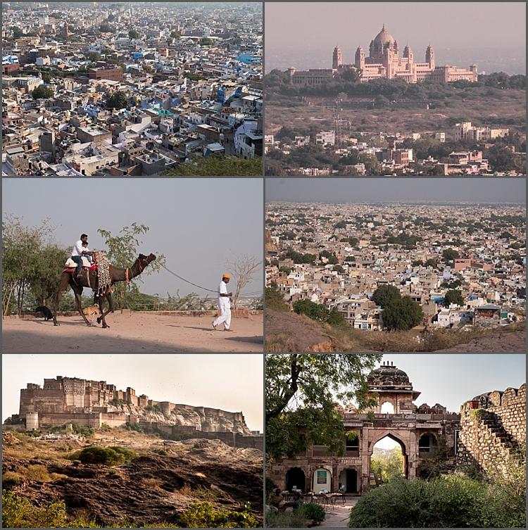 P1030693_Jodhpur Dec 2017-1