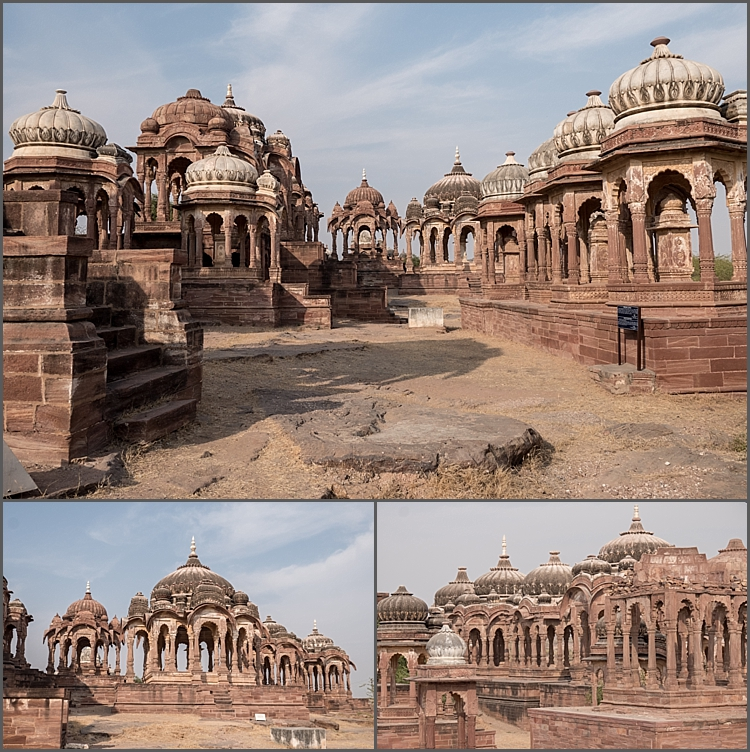 P1030863_Jodhpur environs Dec 2017