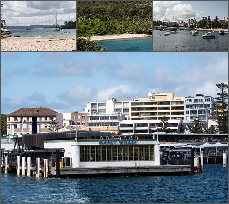 Manly Island NSW