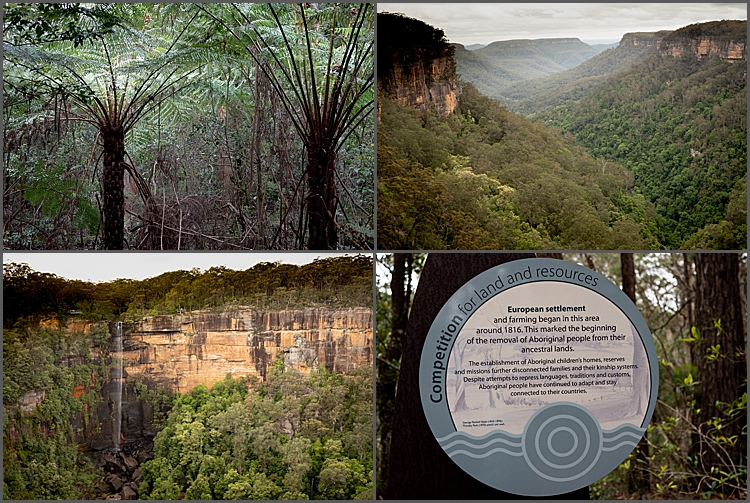 Fitzroy Falls NSW and views.
