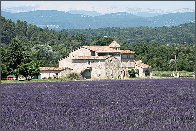 Our week in Provence Part II